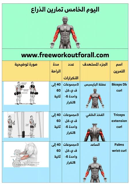 جدول تمارين كمال اجسام للمبتدئين 5 أيام