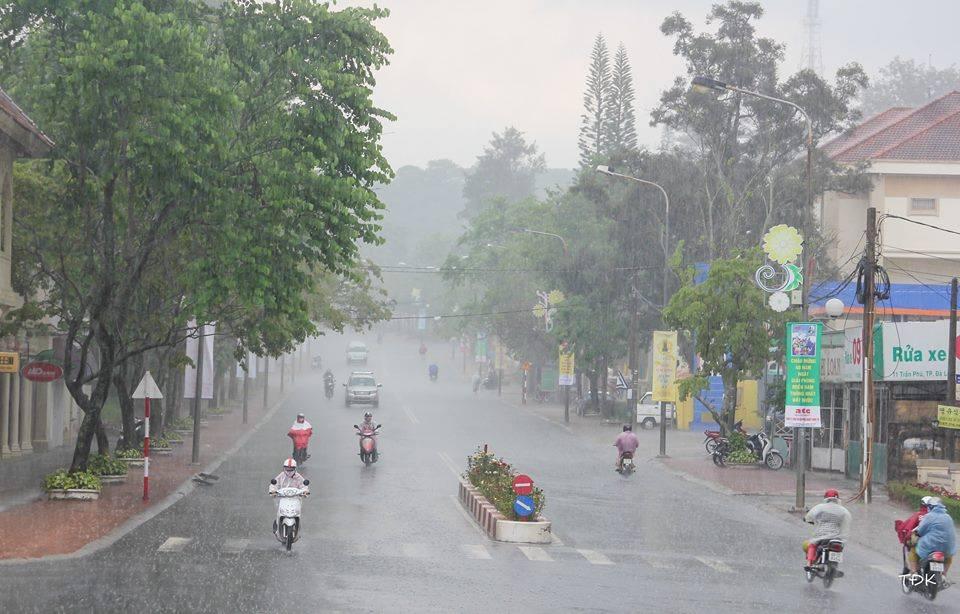 Mùa những cơn mưa trở về gột rửa đất trời