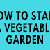 How to Start a Vegetable Garden #infographic