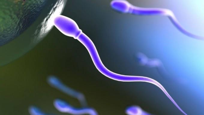Επηρεάζει το εμβόλιο την ανδρική γονιμότητα; Τι έδειξαν οι έρευνες