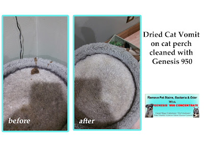 Genesis 950 Cleaning Tips And Tricks How To Clean Pet