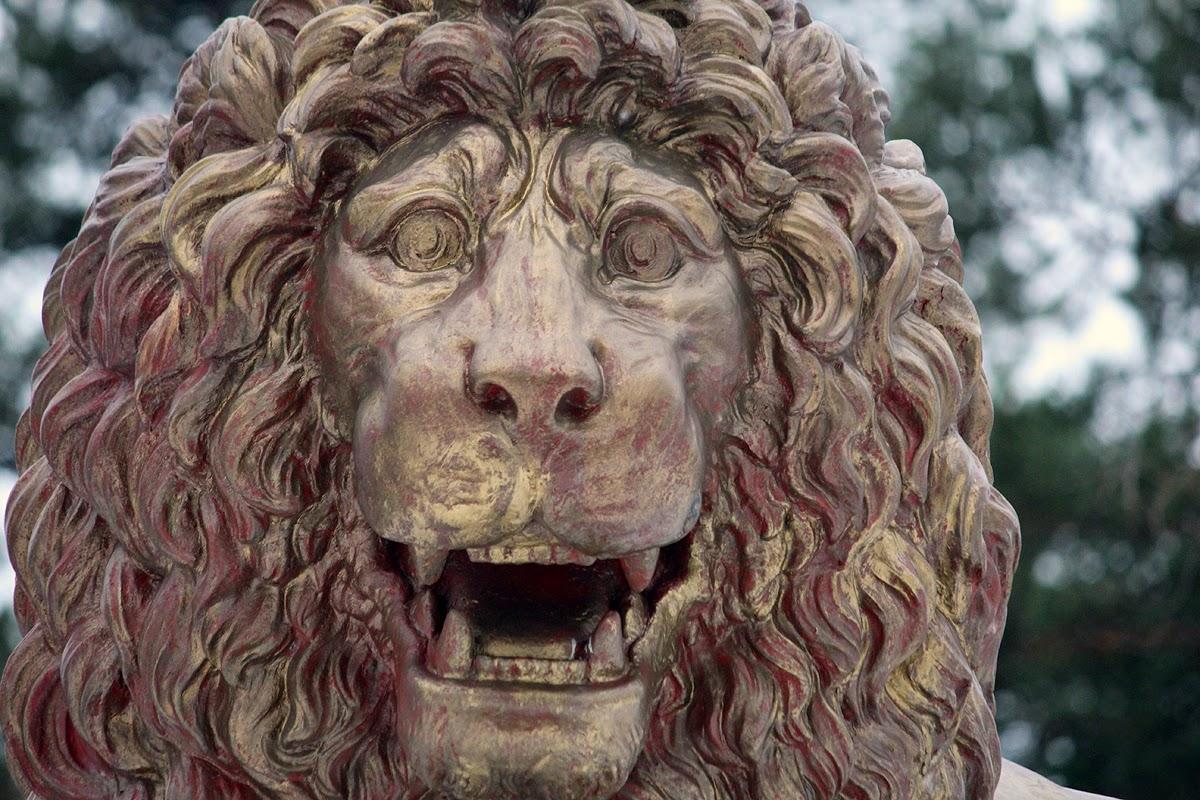Suomi Tour: Parolan leijona