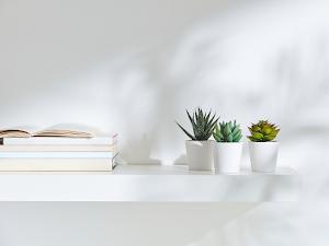 Daftar Harga Pot Plastik Putih per Maret 2021