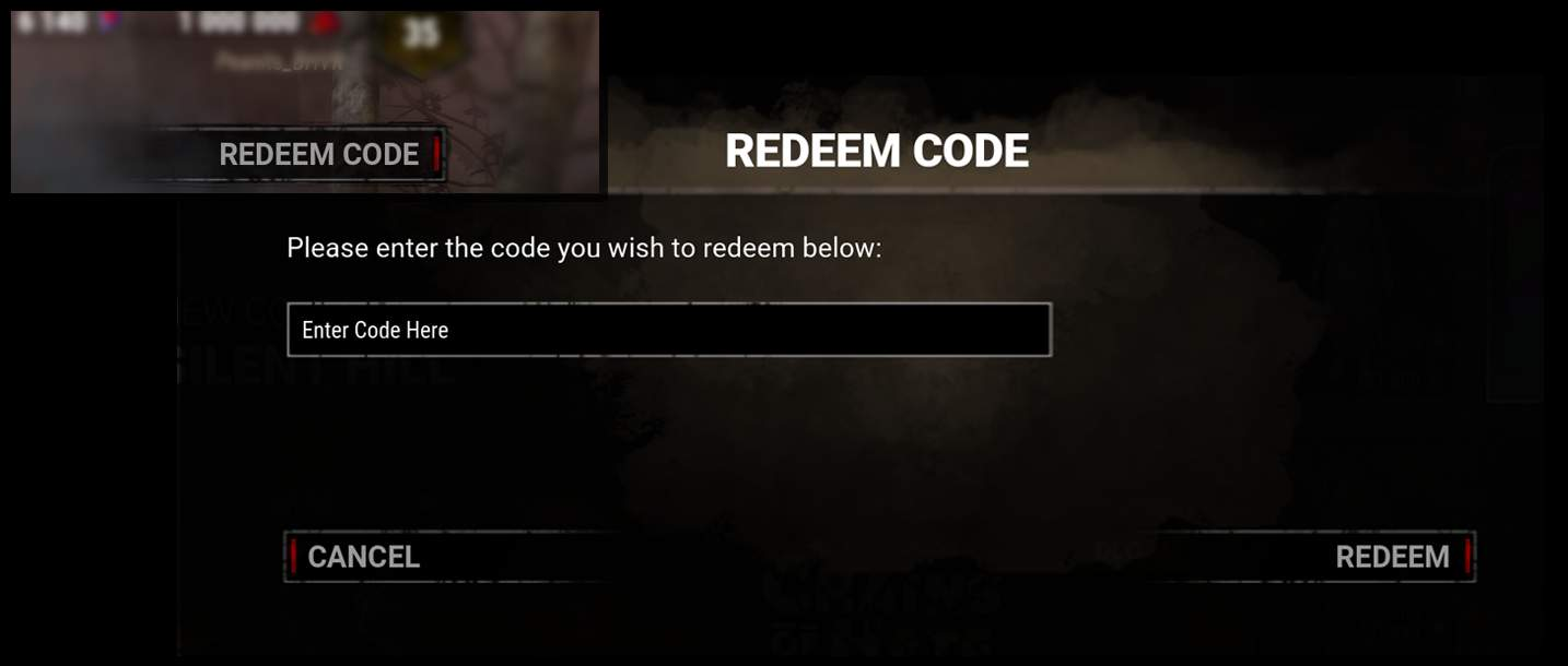 How to enter codes