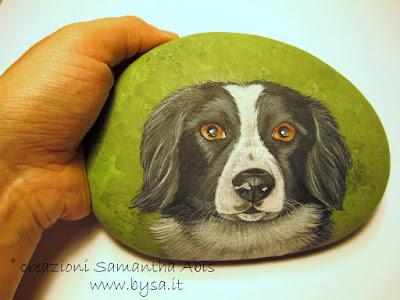 Sassi dipinti prezzi musetti di cane border collie