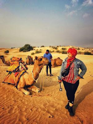 unta di gurun pasir india