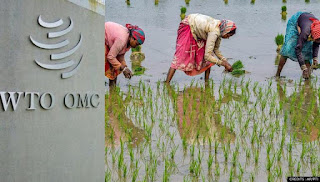 India Ranked 9th in Agricultural Produce Exporters--WTO