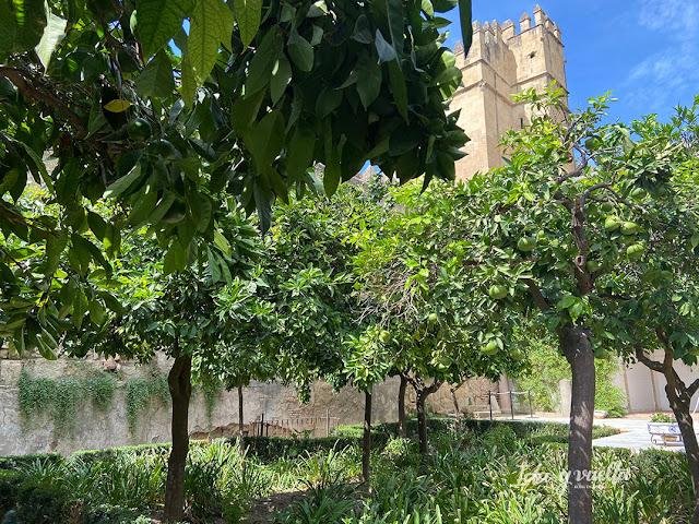 Visitar Córdoba Alcázar Reyes Cristianos