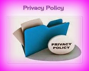 Privacy Policy Cookie GDPR