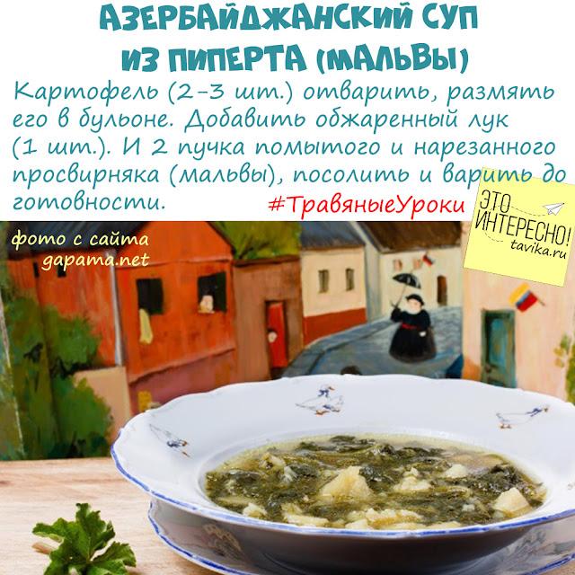 суп из просвирняка (мальвы)