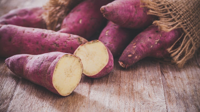 Potatoes vs potato chips for dogs?
