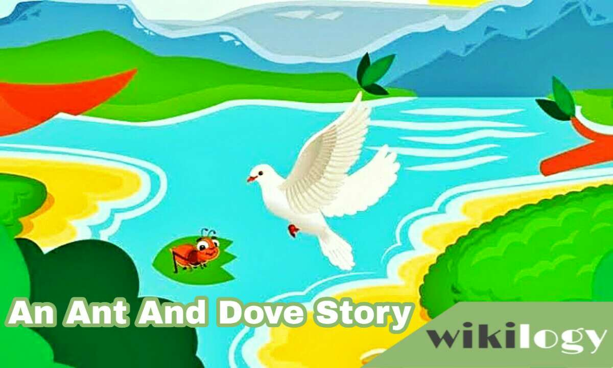 An Ant And A Dove Completing Story