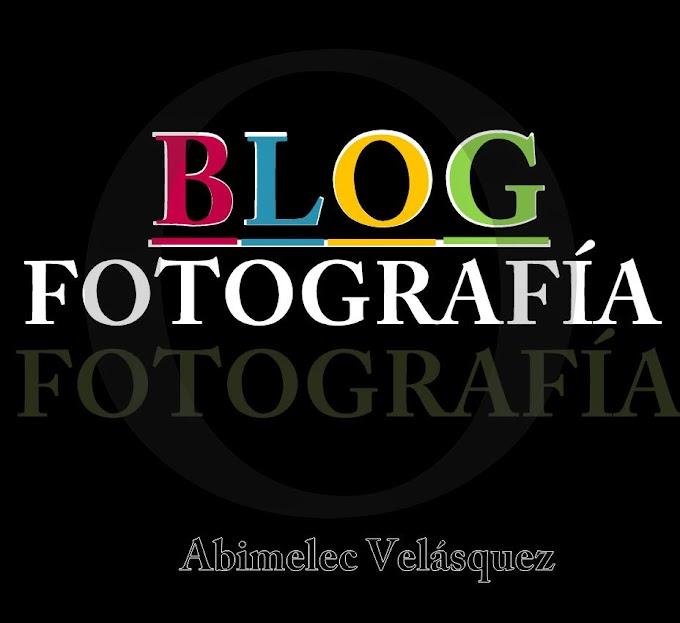 BLOG FOTOGRAFÍA (PARTE 18: CIELO, ÁRBOLES Y CALLE)