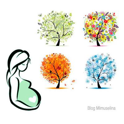 blog mimuselina cual es el mejor mes para quedarme embarazada época ideal embarazo