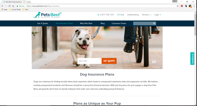 pets best pet health insurance online