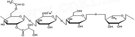 molecular structural formula of HA gellan gum