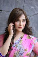 Angela Krislinzki Rogue Movie Fame Telugu Actress in Saree Backless Choli 126.JPG