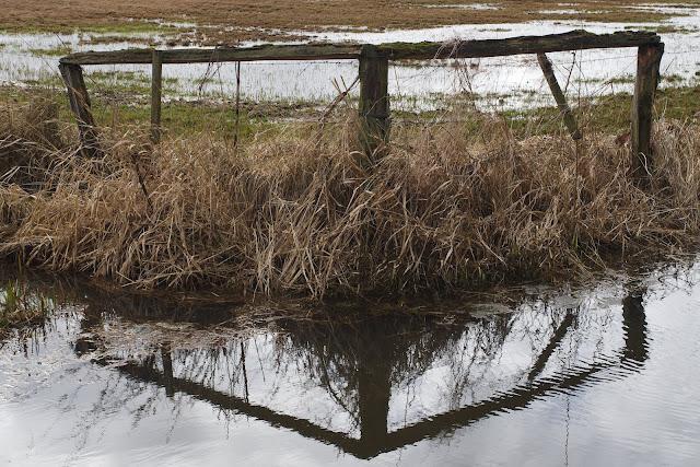Eine Wiesenbegrenzung an einem Wassergraben