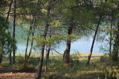 Pantano pena beceite valderrobres pinos