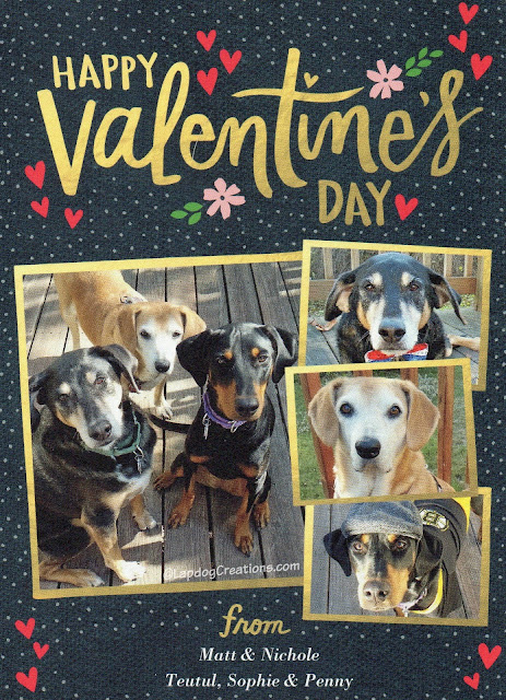dog valentine's day card rescue dogs