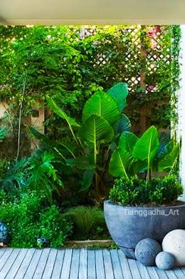 https://www.tianggadha.com/2020/10/membuat-taman-dalam-ruangan-atau-taman.html