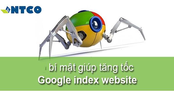 thiet ke web