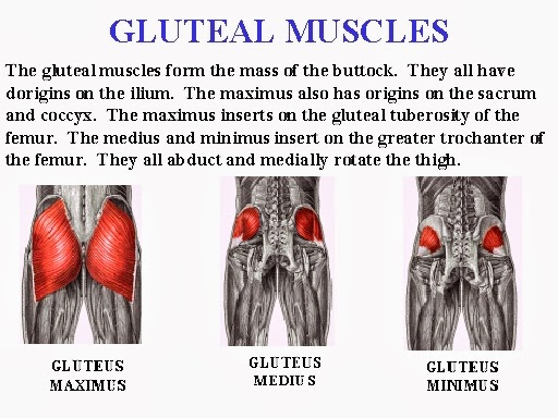 Train Smart Race Fast Powerful Glutes Powerful Athlete