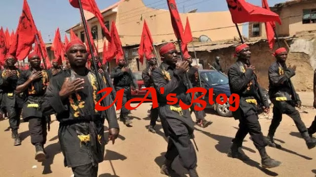 Breaking News: Three Injured As Police Disperse Shi'ite Protesters In Abuja