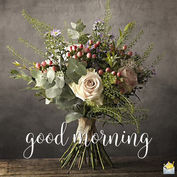 Good Morning Photos