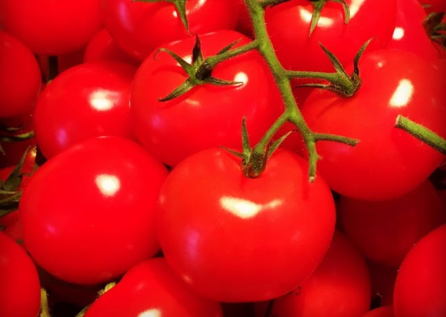 May 10 - Supreme Court Rules: Tomato is Not a Fruit!