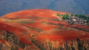 Đất đỏ bazan tiếng Trung là gì
