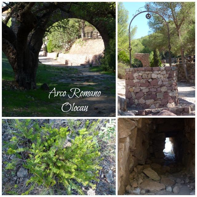 visita excursión con niños arco romano Olocau