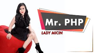 Lirik Lagu Mr. PHP - Lady Micin