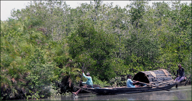 fishermen in sunderbans, west bengal, india travel