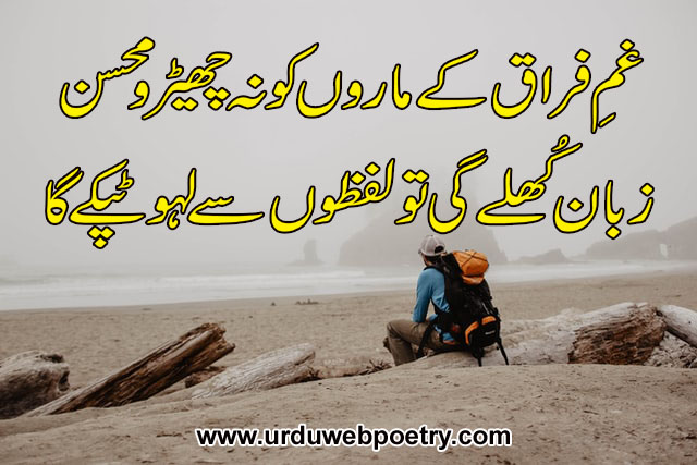 Mohsin Naqvi Poetry In Urdu - Poetry Of Mohsin Naqvi 2 Lines - Mohsin Naqvi Poetry - Poetry Of Mohsin Naqvi - Mohsin Naqvi Shayari