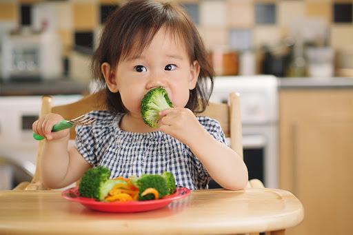 Thực đơn ăn uống phong phú và khoa học sẽ giúp bé tăng sức đề kháng tốt hơn