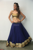 Malvika Raaj in Golden Choli and Skirt at Jayadev Pre Release Function 2017 ~  Exclusive 078.JPG