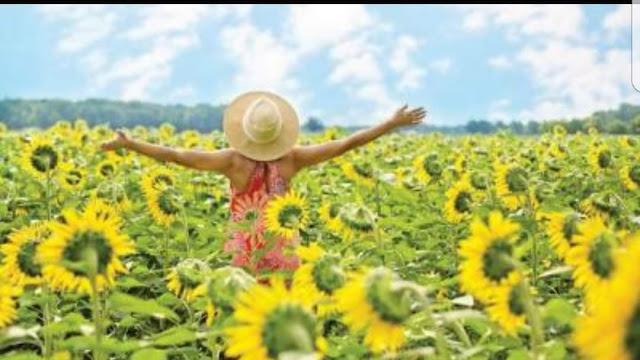 """دراسة: """"الحياة السعيدة الجيدة"""" يمكن أن تكون """"حياة مسؤولة"""""""
