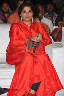 turodu Telugu Movie Audio Launch Stills  0003.jpg