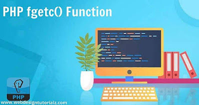 PHP fgetc() Function