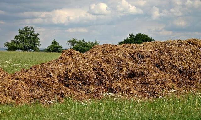 Θεσπρωτία: Μέτρα για την κοπριά από τους Θεσπρωτούς κτηνοτρόφους, ώστε να μην είναι εστία μόλυνσης