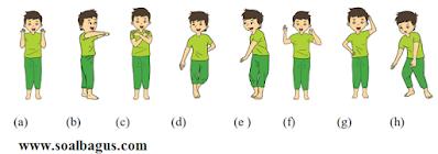 latihan soal tema 3 subtema 2 kelas 2