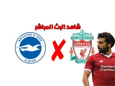 ليفربول VS برايتون .. بث مباشر