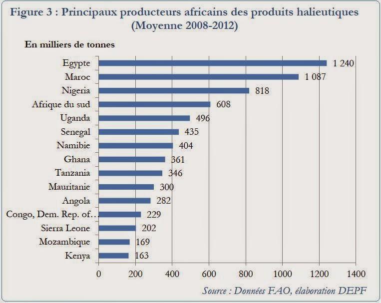en afrique le march du poisson d 39 importation est tr s prometteur selon une tude marocaine. Black Bedroom Furniture Sets. Home Design Ideas
