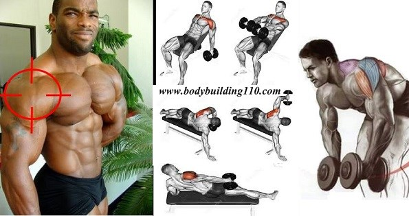 The Best Shoulder Exercises for Big Delts