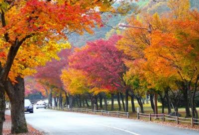 musim gugur inggris
