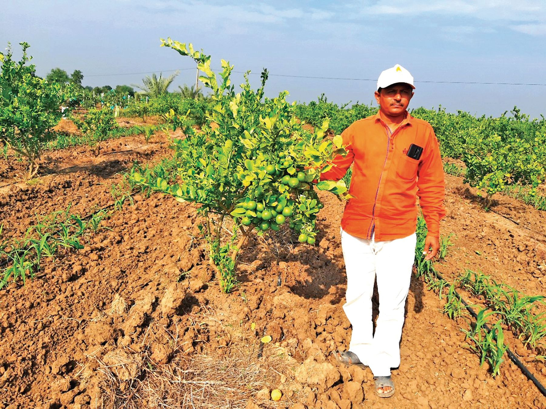 જામફળની ખેતીમાં સફળ થયેલા ખેડૂત