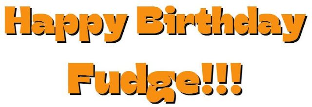 Happy Birthday Fudge Banner ©BionicBasil®