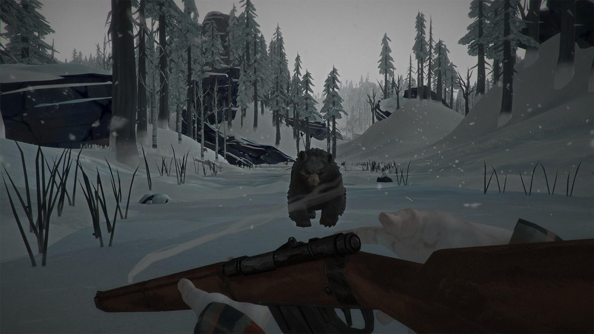 the-long-dark-pc-screenshot-04