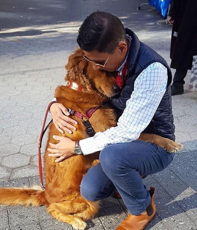9+1 φωτογραφίες για να αγαπήσουμε τα ζωάκια